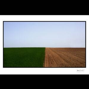 normandie le ciel, l'herbe et la terre trun © francois louchet