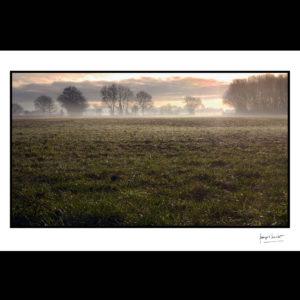normandie prairie hivernale beuzeville © francois louchet
