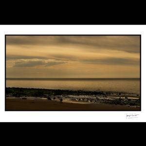 normandie soirée dorée hennequeville © francois louchet